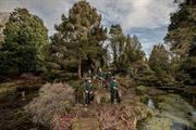 Works begins on restoration of Newby Hall rock garden