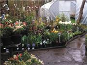Garden centre doubles sales from March-May
