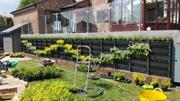 Growing Revolution's new PlantBox system offers 'instant vertical greening'
