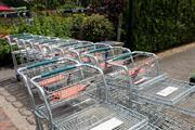 Garden centre forced by Environmental Health to close as non-essential retail