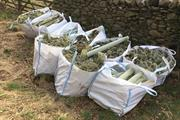 Tree shelter supplier launches collection and recycling service