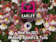 """Earley Ornamentals: """"every emotion"""" felt during rollercoaster year"""