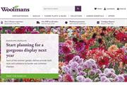 Woolmans sees 400% sales increase after launching new website