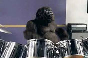 Cadbury Gorilla: brands hope to replicate the ad's success