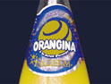 Cadbury Schweppes buys Pernod's <br>soft drinks brands for £442m