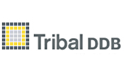 Tribal DDB: appoints Patrick Rona