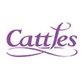 Cattles: JDA wins DM account