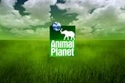 Animal Planet: part of BBC joint venture with Discovery