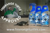 Turtle Wax: free range turtles