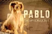 Pablo: part of the government's Frank campaign