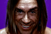 Iggy Pop...star of Swiftcover ad