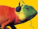 Jazz FM: chameleon may go with relaunch