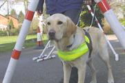 Guide Dogs for the Blind…£7m account