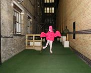 Pink Flamingo:seen at the IPA Online Media Owners Awards launch
