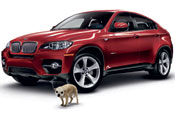 BMW: WCRS wins Anna for canine April Fool ad