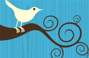 Twitter: focuses on retweets