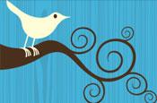 Twitter: social media brand tool