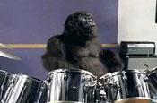 Cadbury: 'gorilla' ad pushes sales