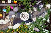 Red Sky crisps: website features roof-top garden