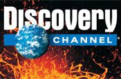 Discovery: international ad team's future under review