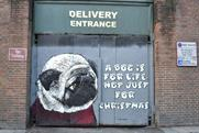 Teddy Baden's street art for the Dogs Trust