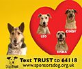 Dogs Trust: 'dating' ad