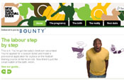 New Dads Survival Guide: new dads' website by Bounty