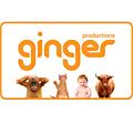 Ginger: new logo