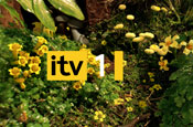 ITV: Sky must reduce holding to less than 7.5%