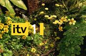 ITV: Sky preparing to appeal