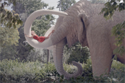 Lufthansa: the German agency Kolle Rebbe handles the brand's creative work