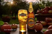 Magners: ad rapped by ASA