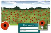 Online poppy field: honouring fallen soldiers