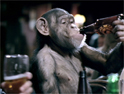 Portman Group: 'drunken monkey' ad