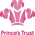 Prince's trust: DMS to handle data and DM