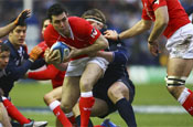 Welsh Rugby: deal signed with Wolf Blass