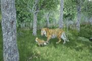 WWF launches virtual reality experience on plight of wild tigers