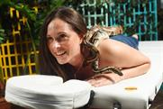 The event programme includes massages by pythons