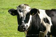 Dairy farms: Asda agrees a fairer deal