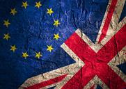Brexit: It's the genes that won it