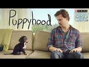 Puppyhood: branded video by Buzzfeed for US brand Purina