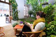 Clifton Nurseries' urban oasis at St Pancras International
