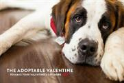 Coors Light is giving you $100 towards a dog this Valentine's Day