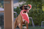 See which brands ran the most TV commercials last week