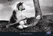Lassie ... returns in Highland Spring ad