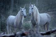 World's Talking About: Unicorns