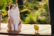 "Dreamies ""Best friends"" by Adam & Eve/DDB"