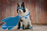 """Petplan """"Pets on 4"""" by Now"""