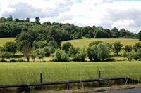 Inspector backs 'robust' green belt review in Surrey local plan
