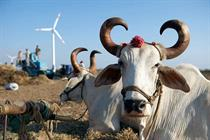 Wind booms through India